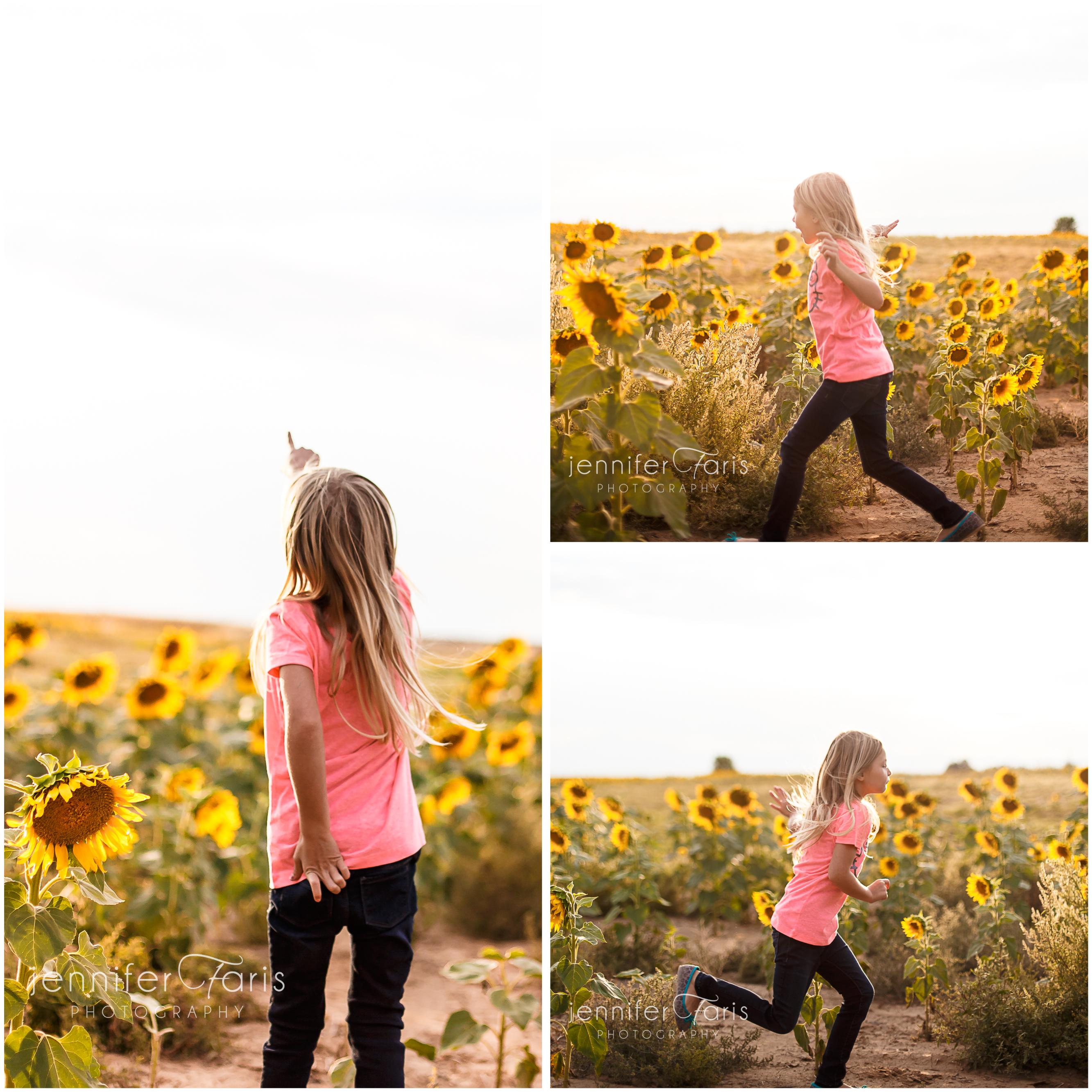 sunflower-photos-6